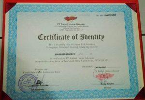 sertifikat-ikan-arwana